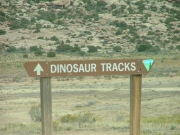 sign_to_dinosaur_tracks