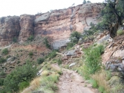 narrow_track