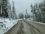 looks_like_winter