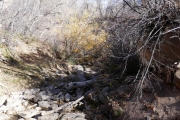 creek_nearly_dry