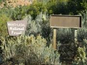 national_forest_signs