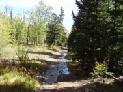 trout_creek_on_the_trail