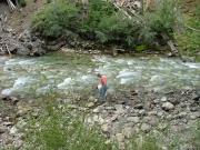 cheryl_at_crystal_river