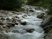 crystal_river_part_1