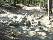 muddy_rocks