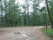 wet_road