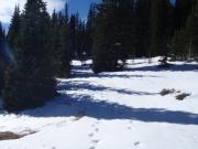 deep_snow