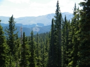 view_from_the_buckeye_lode_mine_part_4