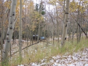 matt_in_aspens
