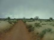 rain_coming