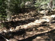 rocky_creek_crossing