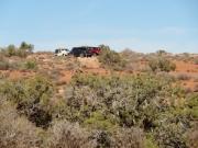 jeeps_parked