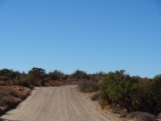 willow_springs_road