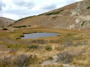 alpine_pond