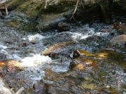 mountain_stream_part_4