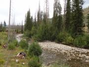 agnes_creek