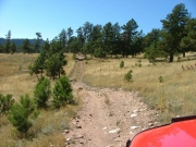 overlook_trail_part_2