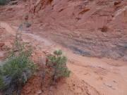 lowest_switchback_part_1