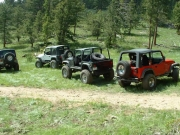 jeeps_at_the_meadow