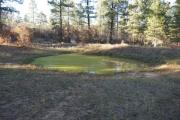 green_pond