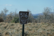 forest_service_sign