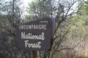 uncompahgre_national_forest_sign