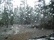 hail_storm