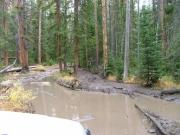 muddy_6