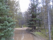 northern_mud_lake