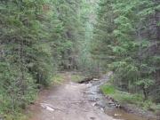 along_elk_creek