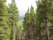 distant_mountain