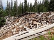 timber_part_2