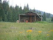 grizzly_cow_camp_part_4