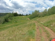 trail_stretching_ahead