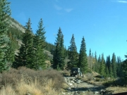 ladd_on_the_trail