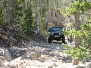bob_on_the_trail
