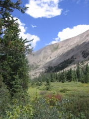 view_at_grizzly_lake_part_3