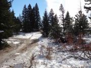 frozen_trail