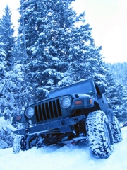 bob_in_deeper_snow_part_5