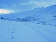 guanella_pass_trail