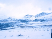 top_of_guanella_pass_part_3