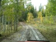 curving_road