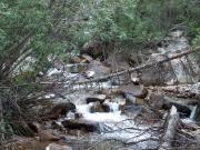 the_creek