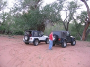 jeeps_at_the_camp_site