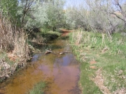 water_crossing_part_3