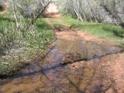 water_crossing_part_4