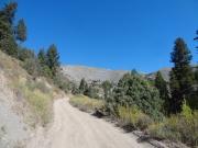 uphill_again