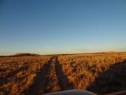 desert_at_dusk
