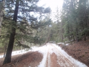 snow_on_the_trail_part_1