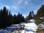 deeper_snow